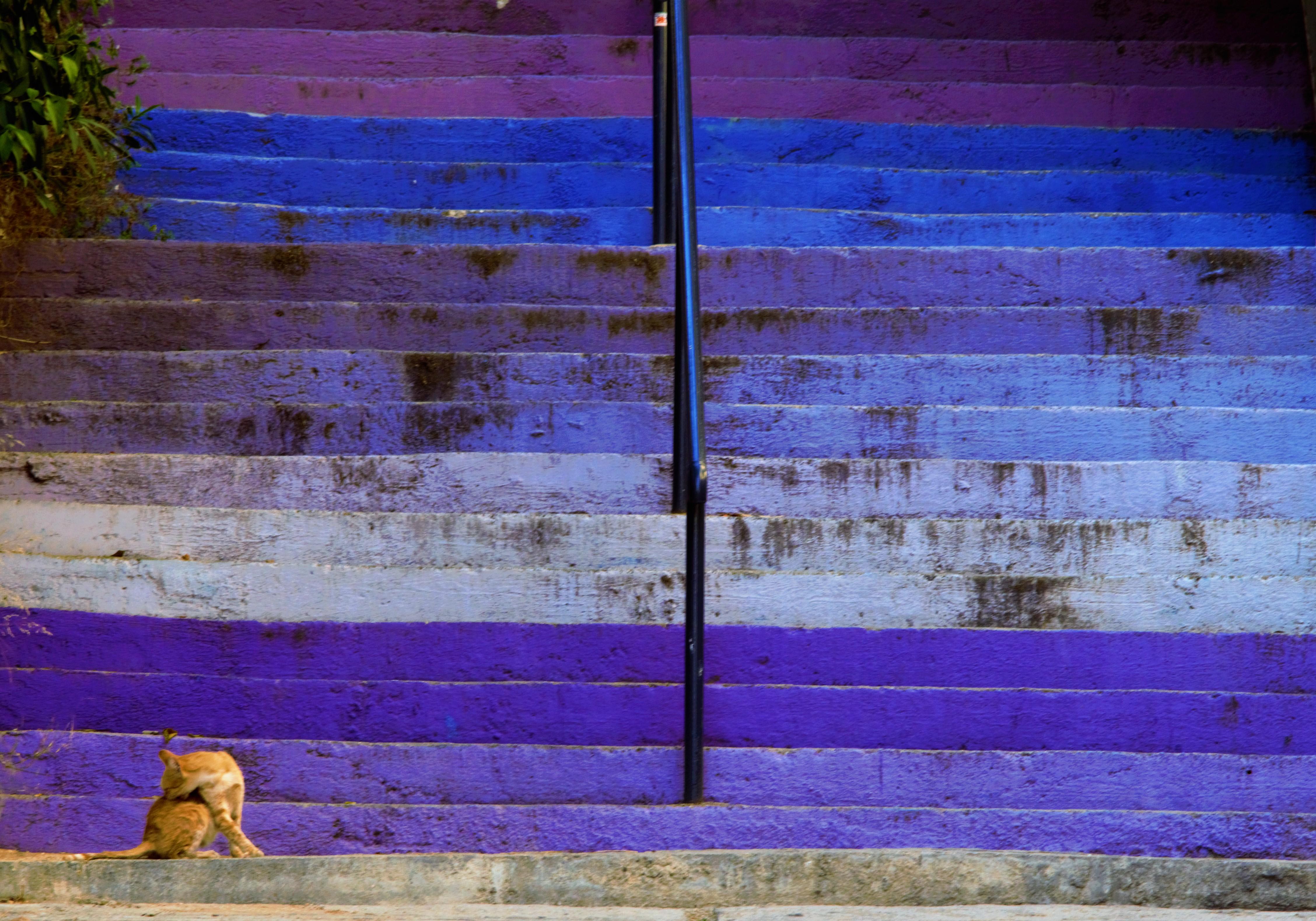 Passeggiando per Atene2